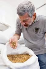 Genuss für alle Sinne: Petr Janik, einer der Neubegründer der Traditionsbrauerei im Kloster Břevnov, testet eine Lieferung Malz.