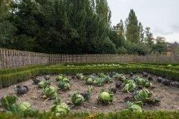 Kopfsache: Obst und Gemüse im Garten der Königin in Versailles werden biologisch angebaut und sind frei von Pestiziden.