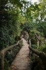 Verschlungene Waldwege verbinden die einzelnen Parkteile.