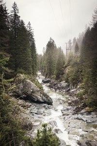 Zauberhaft: Mit Moos bedeckte Steine und Wurzeln in der Roflaschlucht, einem beliebten Ausflugsziel nordwestlich des Magic Wood.